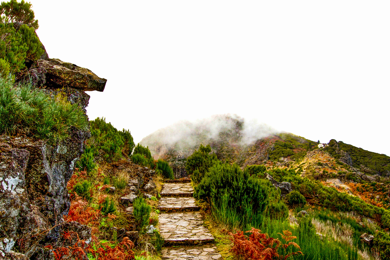 Pico Ruvio Steps