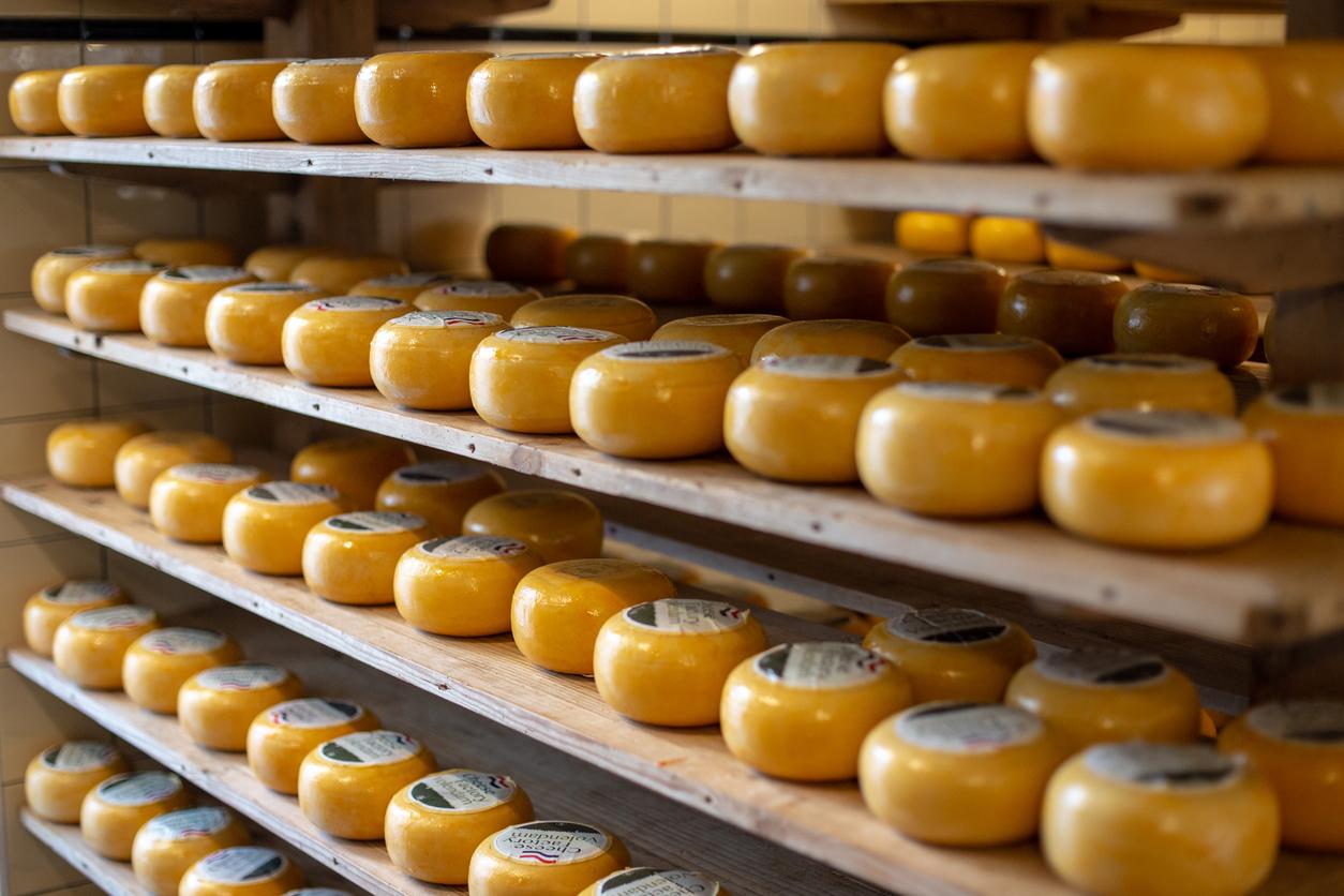 Holland cheese shop