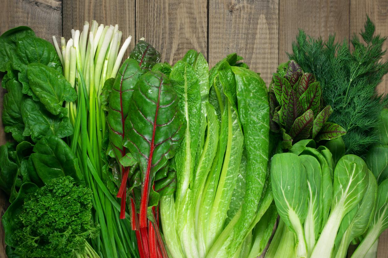 Vitamin set of various green leafy vegetables