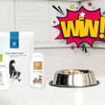 healthspan pet care bundle Aug